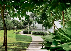 Sejati Residences boasts a central linear park with over 1 ,200 mature trees surrounded by an 8km jogging and cycling track that stretches across the whole development