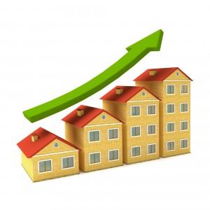 market_value_graph_statistic