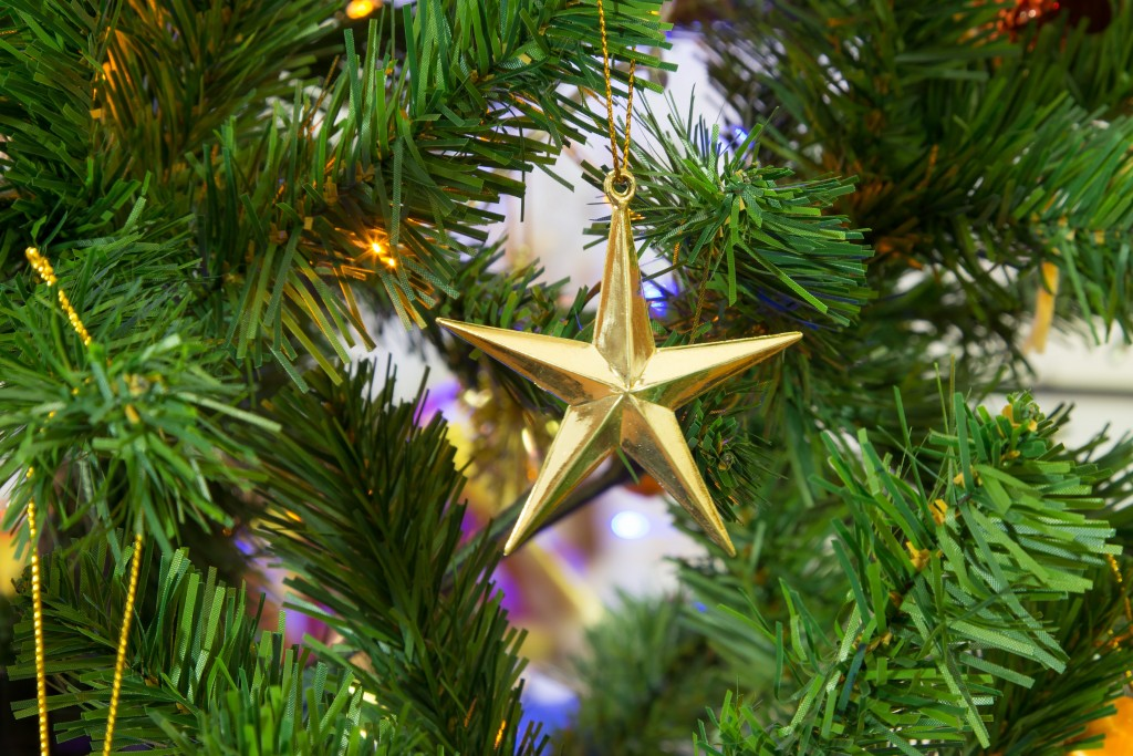 christmas-christmas-star-christmas-tree-34557_1