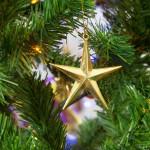christmas-christmas-star-christmas-tree-34557_1