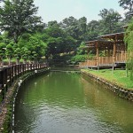 The lake at Perdana Botanical Garden in Kuala Lumpur, after its rehabilitation, rising to Class II from Class III making it safe for various water activities and family enjoyment.