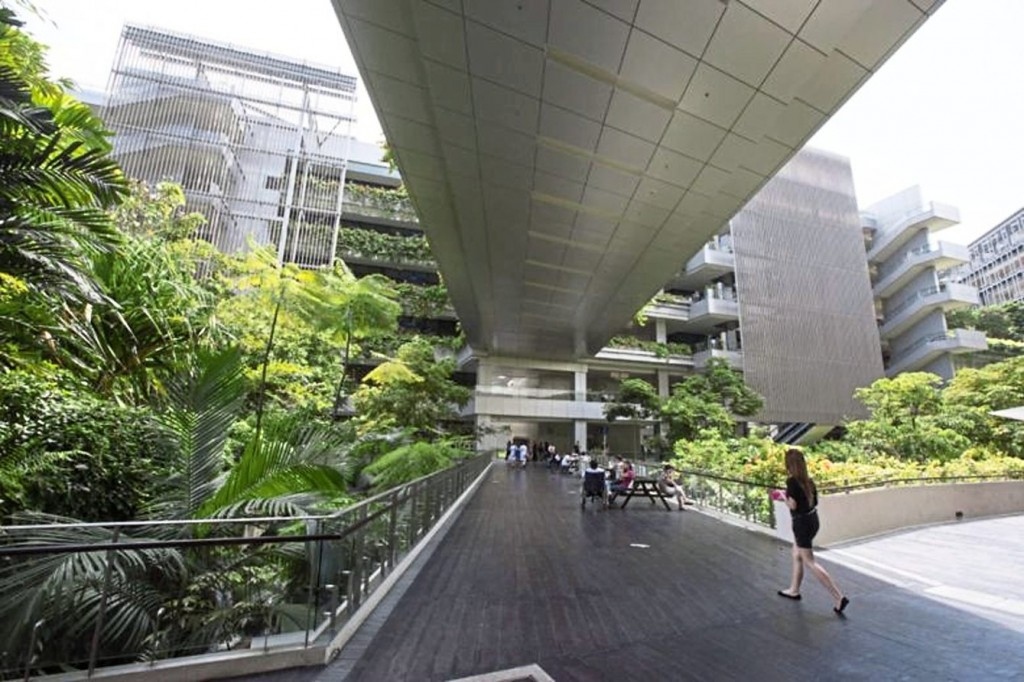 The rainforest-like landscaping at Khoo Teck Puat Hospital infuses the building with natural sights, sounds, and scents.