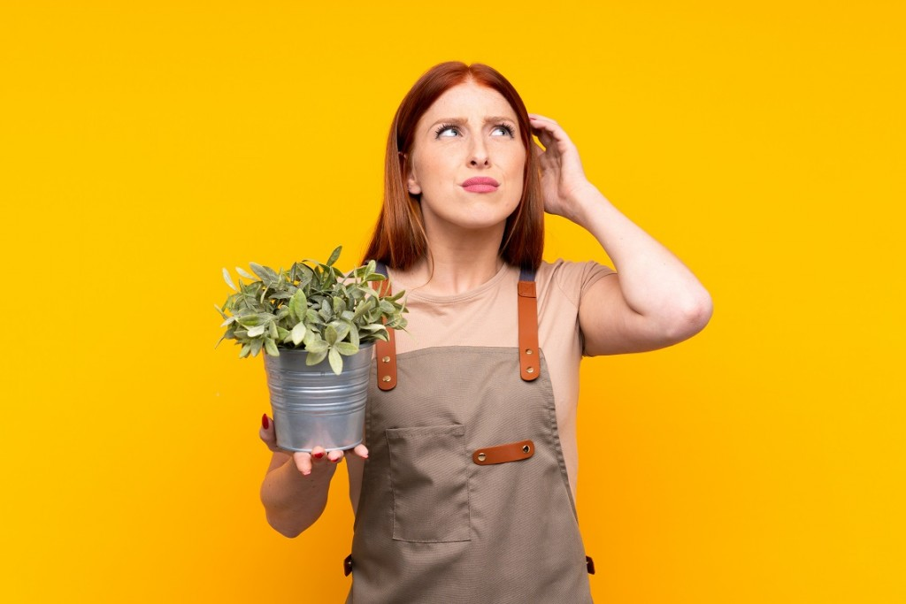 Young redhead gardener woman holding a plant over isolated yellow background having doubts and with confuse face expression