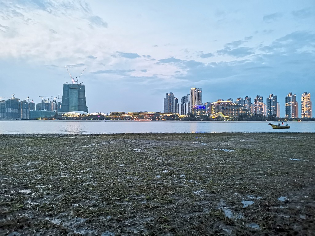 The seagrass meadow opposite FC International Phoenix Marina Hotel is visible at low tide.