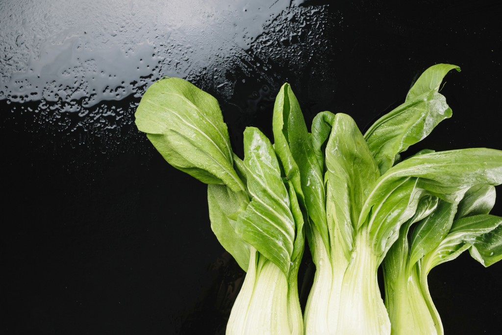 how to grow bok choy at home