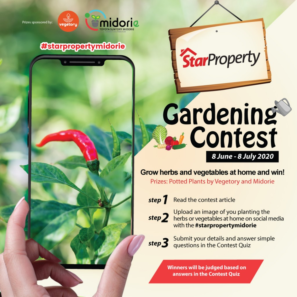 starproperty midorie malaysia and vegetory gardening contest