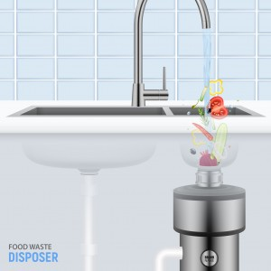 Sink With Food Waste Disposer