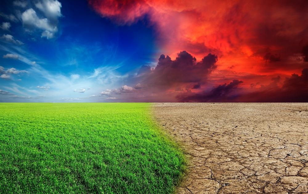 12635713 - ecology landscape - climate change concept, desert invasion